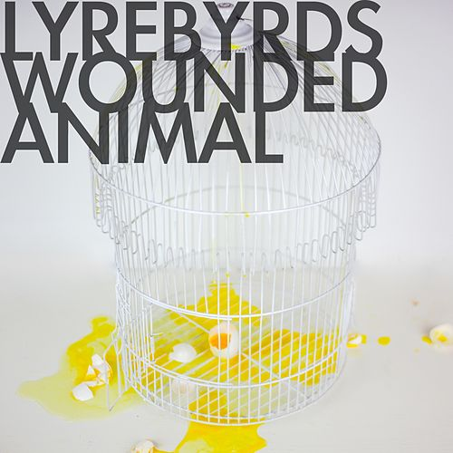 Play & Download Wounded Animal by Lyrebyrds | Napster