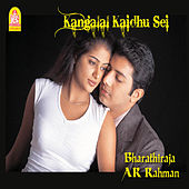 Play & Download Kangalal Kaidhu Sei by A.R. Rahman | Napster