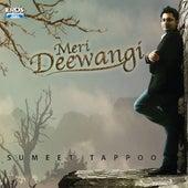 Meri Deewangi by Sumeet Tappoo