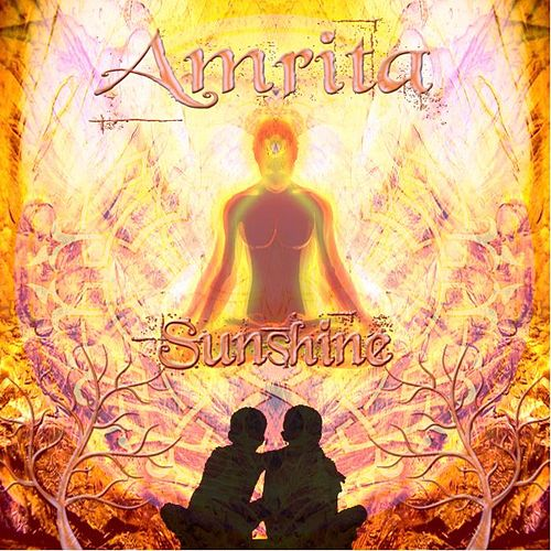 Play & Download Sunshine by Amrita | Napster