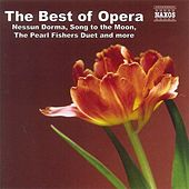 Best Of Opera by Various Artists
