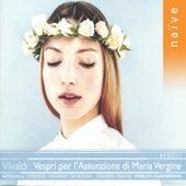 Vivaldi: Vespri per l'Assunzione di Maria Vergine by Rinaldo Alessandrini