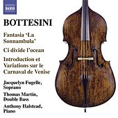 Play & Download The Bottesini Collection, Vol. 4 by Various Artists | Napster