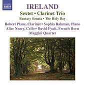 Ireland, J.: Sextet / Clarinet Trio / Fantasy-Sonata / The Holy Boy by Robert Plane