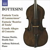 The Bottesini Collection, Vol. 3 by Various Artists