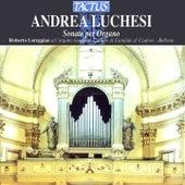 Play & Download Lucchesi: Sonata per Organo by Roberto Loreggian | Napster