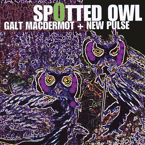 Play & Download Spotted Owl by Galt MacDermot | Napster