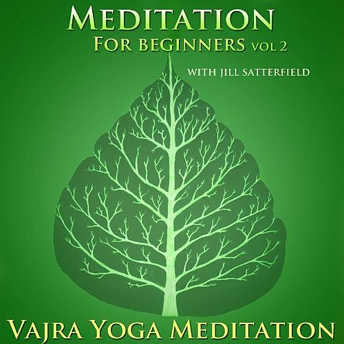 Meditation for Beginners Vol. 2 by Guided Meditation