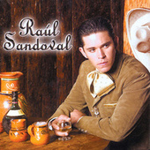 Play & Download Perdon Porque by Raul Sandoval | Napster