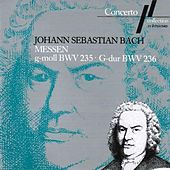 Play & Download J. S. Bach: Messe G-Moll, BWV 235 & Messe G-Dur, BWV 236 by Various Artists | Napster