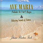 Play & Download Ave Maria & Relaxing Sounds of Nature by Anastasi | Napster