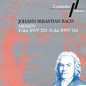Play & Download J. S. Bach: Messe F-Dur BWV 233 & Messe A-Dur BWV 234 by Various Artists | Napster
