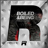 Boiled and Beeing by Various Artists