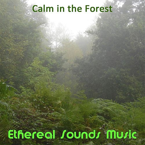 Calm in the Forest by Ethereal Sounds Music
