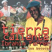 Play & Download Tierra Caliente by Ibrahim Ferrer | Napster