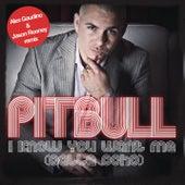 I Know You Want Me (Alex Gaudino & Jason Rooney Remix) by Pitbull