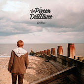 Play & Download Animal by The Pigeon Detectives | Napster