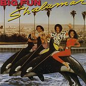 Big Fun by Shalamar