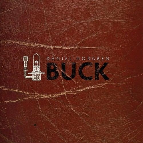 Buck by Daniel Norgren