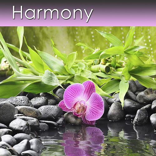 Play & Download Harmony by Dr. Harry Henshaw | Napster