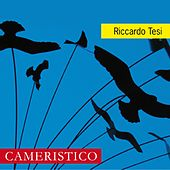 Play & Download Cameristico by Riccardo Tesi | Napster