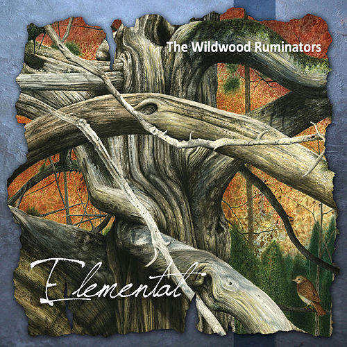 Elemental by The Wildwood Ruminators
