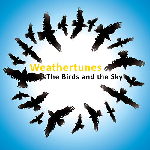Play & Download The Birds And The Sky by Weathertunes | Napster