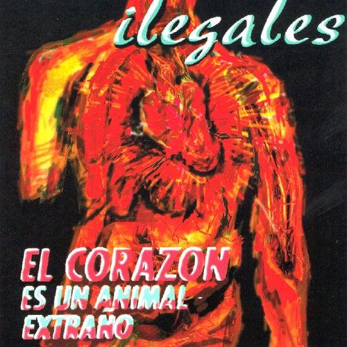 El Corazon Es un Animal Extraño by Ilegales