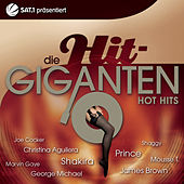 Die Hit Giganten - Hot Hits von Various Artists