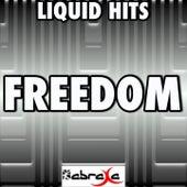 Freedom - A Tribute to Nicki Minaj by Liquid Hits