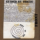 Down by the Racetrack by Guided By Voices
