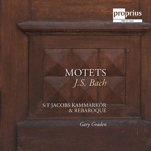 Play & Download Bach: Motets by St. Jacob's Chamber Choir | Napster