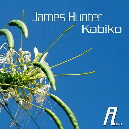 Kabiko by James Hunter