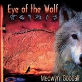Eye of the Wolf by Medwyn Goodall