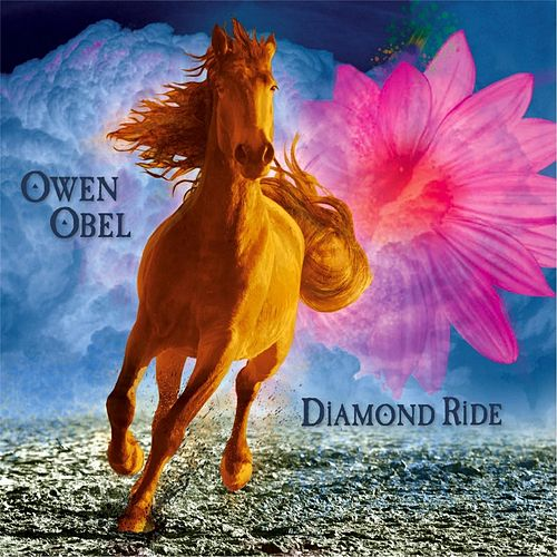 Diamond Ride by Owen Obel
