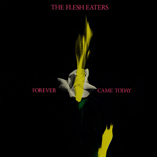 Forever Came Today by The Flesh Eaters