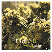 Play & Download Kushbush + Music for Grass Bars (Special Edition) by Plateau | Napster