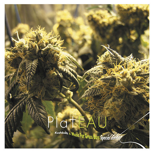 Kushbush + Music for Grass Bars (Special Edition) by Plateau