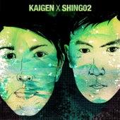 Play & Download 自核 / Jikaku by Shing02 Kaigen | Napster