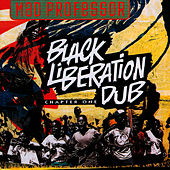 Play & Download Black Liberation Dub by Mad Professor | Napster