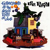 Experryments At The Grass Roots Of Dub by Lee