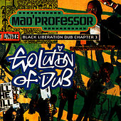 Play & Download Evolution of Dub (Chapter 3) by Mad Professor | Napster