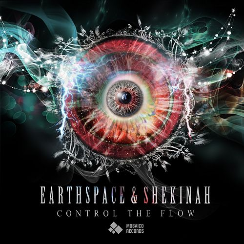 Play & Download Control the Flow by Earthspace  | Napster