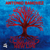 New Life by Antonio Sanchez