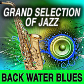 Grand Selection Of Jazz: Back Water Blues von Various Artists