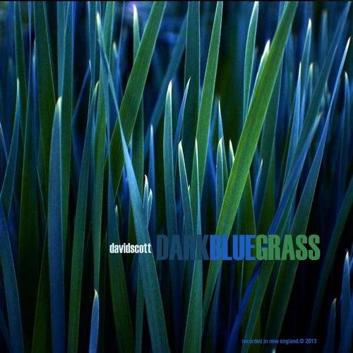Play & Download Dark Blue Grass by David Scott | Napster