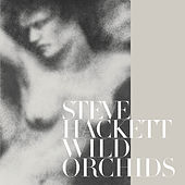 Play & Download Wild Orchids (Re-Issue 2013) by Steve Hackett | Napster