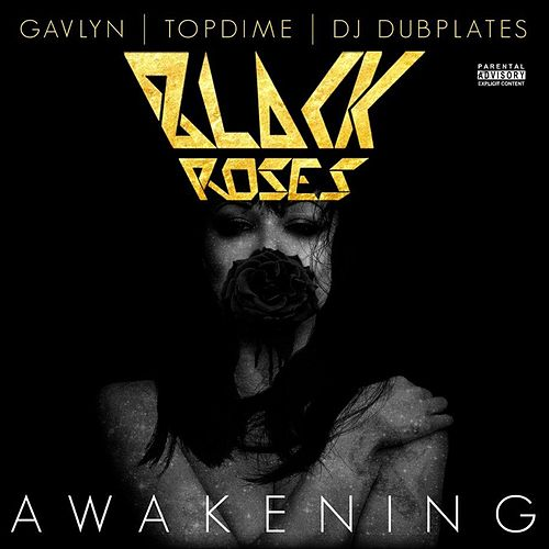 Awakening (feat. Gavlyn, Topdime, and DJ Dubplates) by Black Roses