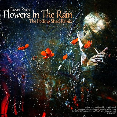 Play & Download Flowers in the Rain (Potting Shed Remix) by David Priest | Napster