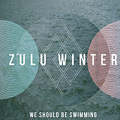 Play & Download We Should Be Swimming by Zulu Winter | Napster